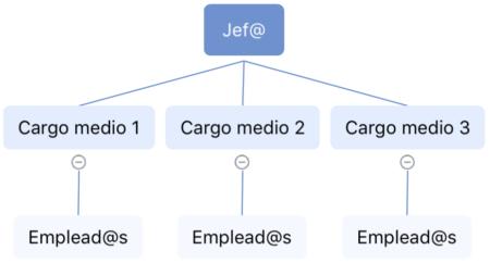 Estructura funcional 1