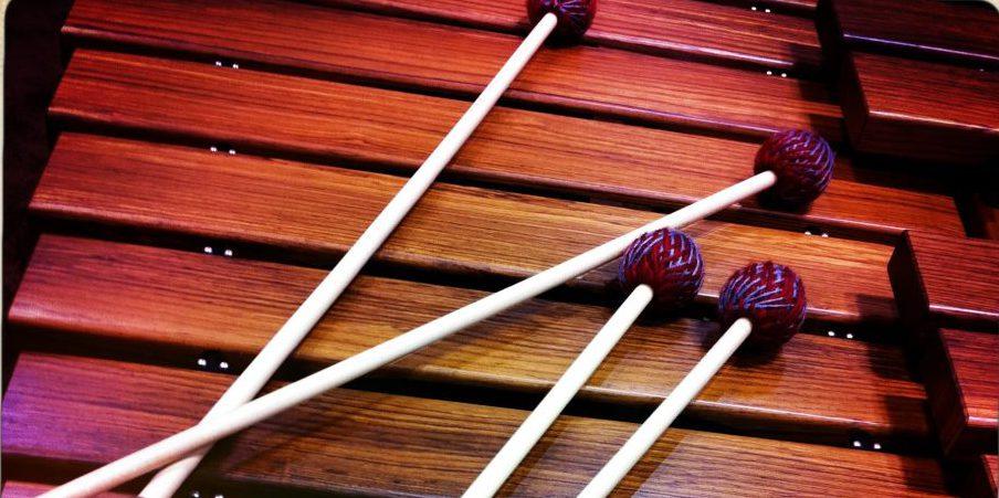 marimba: articulaciones y proyección